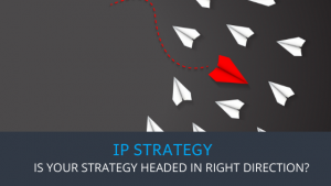 Triangle IP - Is my IP strategy headed in right direction?
